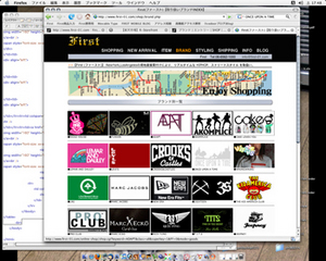 20080405brandpage-thumb