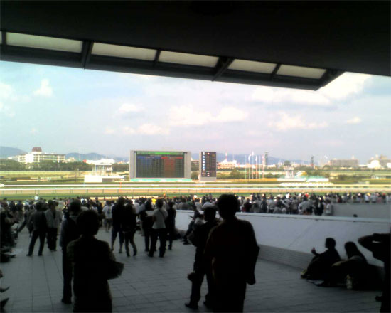 First Staff Blog-競馬場