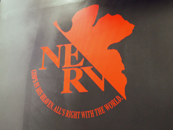 First Staff Blog-NERV
