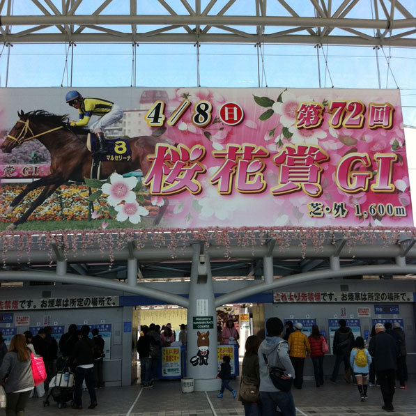 ☆ First Staff Blog ☆-阪神競馬場